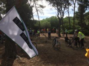 Convergence 2017 au Bois des Aresquiers